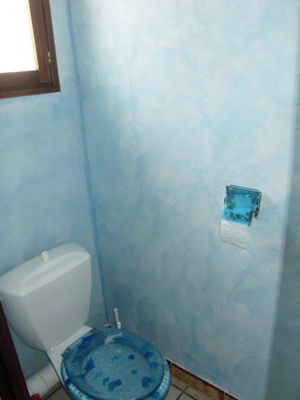 Peinture des wc blog magicmanu - Peindre des wc ...