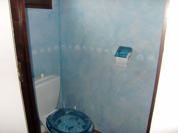 Blog de magicmanu :Aménagement de notre maison, Pochoirs toilettes