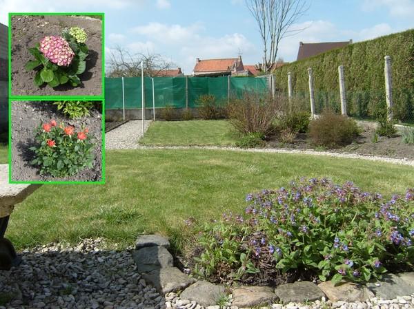 Blog de magicmanu :Aménagement de notre maison, Fin de l'hiver, au tour du jardin