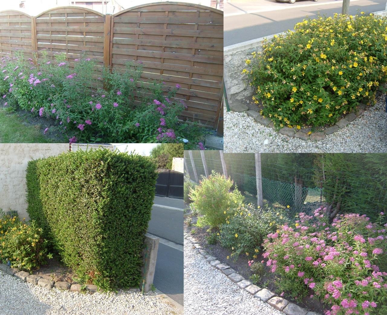 Petit tour dans le jardin blog magicmanu - Manu chao le petit jardin youtube ...